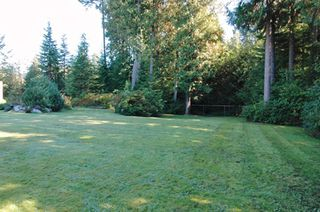 Photo 13: 12447 POWELL Street in Mission: Stave Falls House for sale : MLS®# F2627002