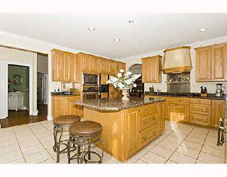 "Photo 34: 23880 133RD Avenue in Maple_Ridge: Silver Valley House for sale in ""ROCK RIDGE"" (Maple Ridge)  : MLS®# V745602"