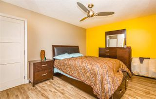 Photo 11: 11315 37 Avenue in Edmonton: Zone 16 House for sale : MLS®# E4168759