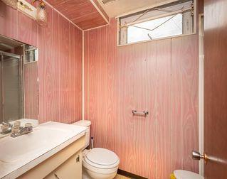 Photo 13: 11315 37 Avenue in Edmonton: Zone 16 House for sale : MLS®# E4168759