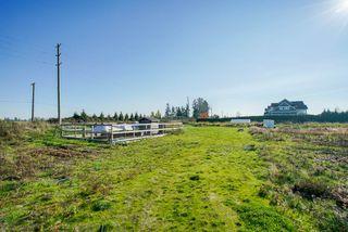 Photo 10: 5193 160 Street in Surrey: Sullivan Station Land for sale : MLS®# R2403541