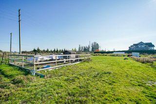 Photo 8: 5193 160 Street in Surrey: Sullivan Station Land for sale : MLS®# R2403541