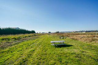 Photo 15: 5193 160 Street in Surrey: Sullivan Station Land for sale : MLS®# R2403541