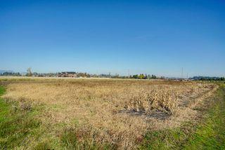 Photo 14: 5193 160 Street in Surrey: Sullivan Station Land for sale : MLS®# R2403541