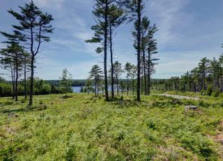 Photo 4: Lot 25 Swallow Cove Spur in Chester Basin: 405-Lunenburg County Vacant Land for sale (South Shore)  : MLS®# 202007714