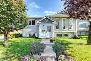 Main Photo: 96 Castledale Crescent NE in Calgary: Castleridge Detached for sale : MLS®# A1016319