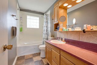Photo 20: 7316 147 Avenue in Edmonton: Zone 02 House for sale : MLS®# E4211582