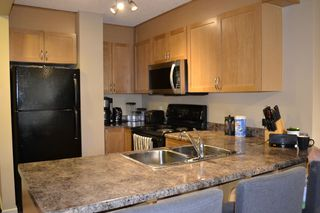 Photo 4: 202 9715 110 Street in Edmonton: Zone 12 Condo for sale : MLS®# E4215197