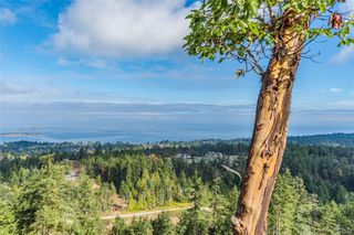 Photo 41: 7416 High Ridge Cres in : Na Upper Lantzville House for sale (Nanaimo)  : MLS®# 857605