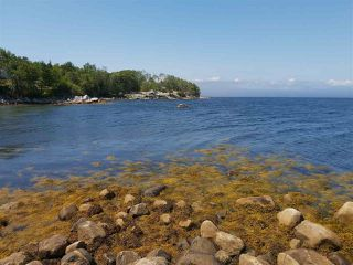 Photo 2: Lots Shore Road in Churchover: 407-Shelburne County Vacant Land for sale (South Shore)  : MLS®# 202011924