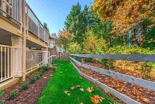 """Photo 22: 14 15989 MOUNTAIN VIEW Drive in Surrey: Grandview Surrey Townhouse for sale in """"Hearthstone"""" (South Surrey White Rock)  : MLS®# R2476687"""