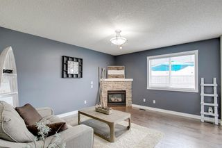 Photo 17: 128 CANOE Drive SW: Airdrie Detached for sale : MLS®# A1019392