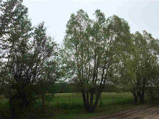 Photo 2: 49229A Range Road 81: Rural Brazeau County House for sale : MLS®# E4178301