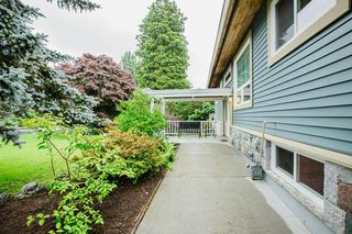 Photo 31: 21060 EDGEDALE Avenue in Maple Ridge: Southwest Maple Ridge House for sale : MLS®# R2471043