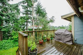 Photo 26: 21060 EDGEDALE Avenue in Maple Ridge: Southwest Maple Ridge House for sale : MLS®# R2471043