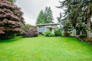 Photo 33: 21060 EDGEDALE Avenue in Maple Ridge: Southwest Maple Ridge House for sale : MLS®# R2471043