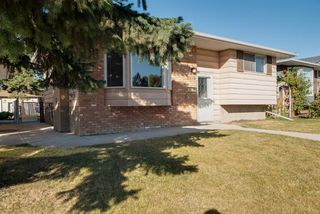 Photo 38: 3719 28 Street SE in Calgary: Dover Detached for sale : MLS®# A1040737