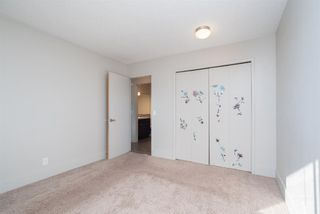 Photo 16: 3719 28 Street SE in Calgary: Dover Detached for sale : MLS®# A1040737