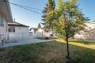 Photo 31: 3719 28 Street SE in Calgary: Dover Detached for sale : MLS®# A1040737