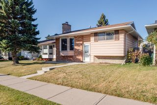 Photo 37: 3719 28 Street SE in Calgary: Dover Detached for sale : MLS®# A1040737