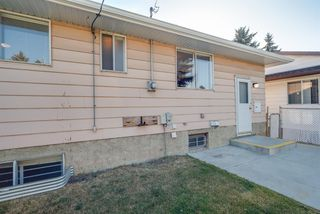 Photo 30: 3719 28 Street SE in Calgary: Dover Detached for sale : MLS®# A1040737