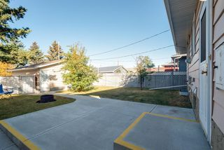 Photo 29: 3719 28 Street SE in Calgary: Dover Detached for sale : MLS®# A1040737