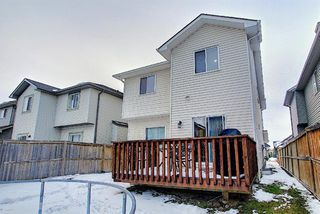 Photo 41: 2914 Prairie Springs Grove SW: Airdrie Detached for sale : MLS®# A1049901