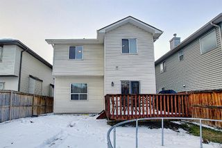 Photo 40: 2914 Prairie Springs Grove SW: Airdrie Detached for sale : MLS®# A1049901