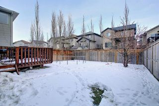 Photo 42: 2914 Prairie Springs Grove SW: Airdrie Detached for sale : MLS®# A1049901