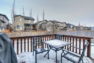 Photo 15: 2914 Prairie Springs Grove SW: Airdrie Detached for sale : MLS®# A1049901