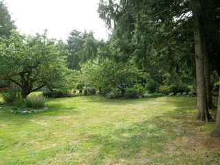 Photo 38: 2497 206th Street in Langley: Home for sale : MLS®# F1220754