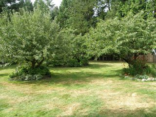 Photo 31: 2497 206th Street in Langley: Home for sale : MLS®# F1220754