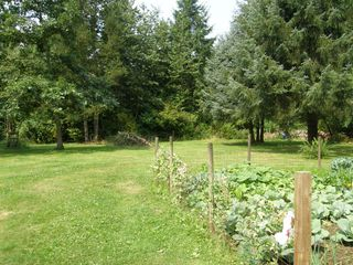 Photo 32: 2497 206th Street in Langley: Home for sale : MLS®# F1220754