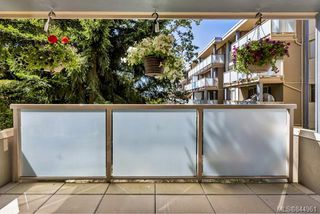 Photo 16: 204 1025 Inverness Rd in Saanich: SE Quadra Condo Apartment for sale (Saanich East)  : MLS®# 844961