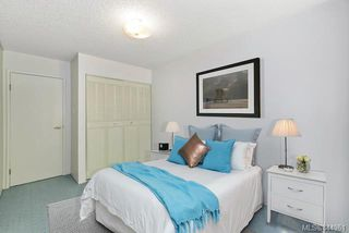 Photo 10: 204 1025 Inverness Rd in Saanich: SE Quadra Condo Apartment for sale (Saanich East)  : MLS®# 844961