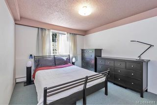 Photo 12: 204 1025 Inverness Rd in Saanich: SE Quadra Condo Apartment for sale (Saanich East)  : MLS®# 844961