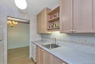 Photo 9: 204 1025 Inverness Rd in Saanich: SE Quadra Condo Apartment for sale (Saanich East)  : MLS®# 844961