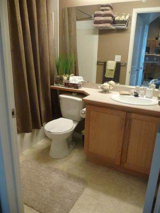 Photo 7: 339, 16221 - 95 Street in Edmonton: Condo for rent