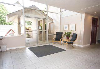 """Photo 23: 304 11816 88 Avenue in Delta: Annieville Condo for sale in """"Sungod Villa"""" (N. Delta)  : MLS®# R2499442"""