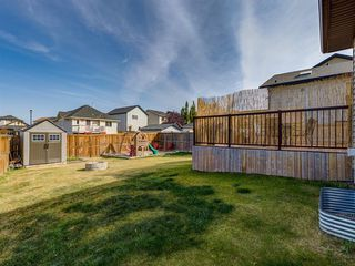 Photo 43: 1350 PRAIRIE SPRINGS Park SW: Airdrie Detached for sale : MLS®# A1037776