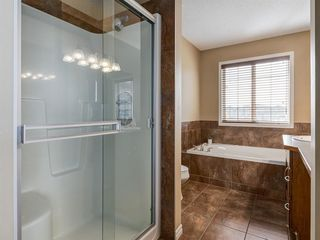 Photo 32: 1350 PRAIRIE SPRINGS Park SW: Airdrie Detached for sale : MLS®# A1037776