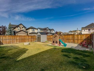 Photo 45: 1350 PRAIRIE SPRINGS Park SW: Airdrie Detached for sale : MLS®# A1037776