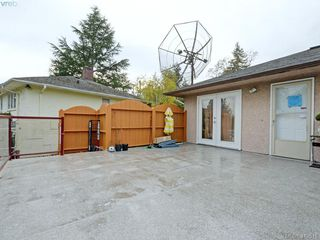Photo 12: 4113 Quadra Street in VICTORIA: SE Lake Hill Single Family Detached for sale (Saanich East)  : MLS®# 419515