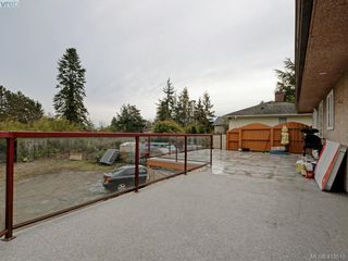 Photo 14: 4113 Quadra Street in VICTORIA: SE Lake Hill Single Family Detached for sale (Saanich East)  : MLS®# 419515