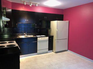 Photo 3: 5727 189 ST NW in Edmonton: Zone 20 House Half Duplex for sale : MLS®# E4180617