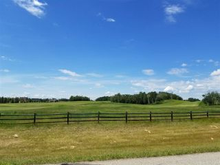 Photo 3: 62 25527 TWP RD 511 A: Rural Parkland County Rural Land/Vacant Lot for sale : MLS®# E4191650