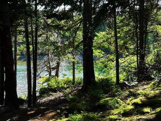 Photo 5: Vac. Land Shady Pine Lane in Heckman's Island: 405-Lunenburg County Vacant Land for sale (South Shore)  : MLS®# 202018988