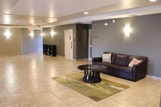 Photo 9: 101 263 MACEWAN Road in Edmonton: Zone 55 Condo for sale : MLS®# E4169047