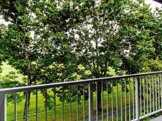 "Photo 5: 324 3451 SPRINGFIELD Drive in Richmond: Steveston North Condo for sale in ""Admiral Court"" : MLS®# R2472758"