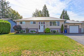 Photo 1: 21498 Berry Avenue in Maple Ridge: Home for sale : MLS®# R2109715